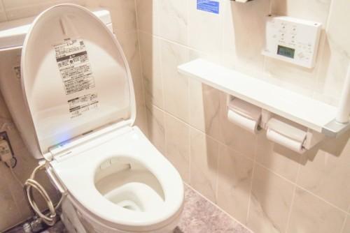 烏枢沙摩明王様(うすさまみょうおうさま)というトイレの神様で金運アップ