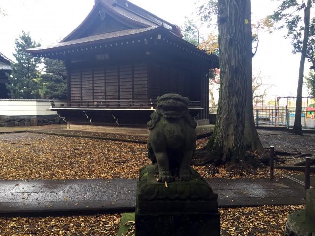 和泉熊野神狛犬さん1