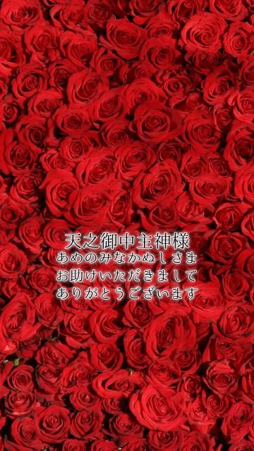 天之御中主神様(あめのみなかぬしさま)恋愛待ち受け画像 薔薇1
